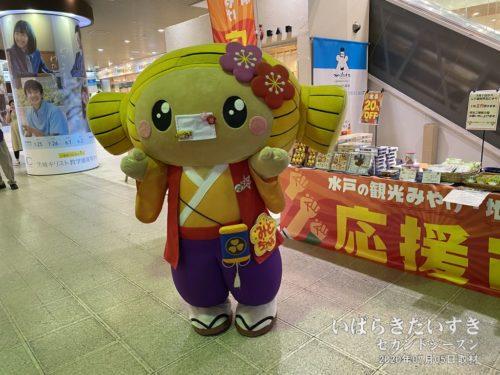 JR水戸駅にて、マスクをつけた みとちゃん さんと遭遇します。