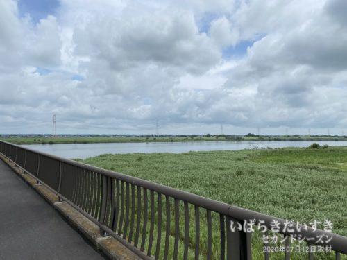 若草大橋から水量が増した利根川を望む。