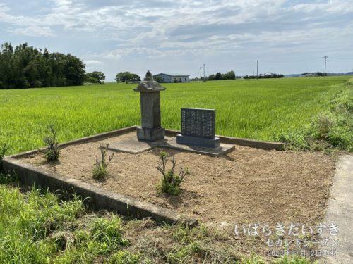 一角には「曲川洲島弁天様移転の碑」。