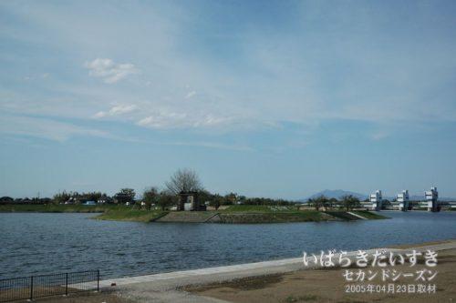 小貝川の水量があり、旧岡堰にアクセスできない。