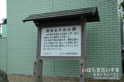 「潮来あやめの碑」〔茨城県潮来市あやめ〕(2005年撮影)