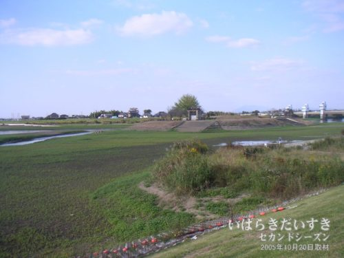 小貝川の水量が減り、陸続きとなる旧岡堰。
