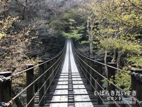 汐見滝吊橋 〔茨城県高萩市〕