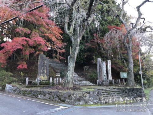 紅葉の小松寺