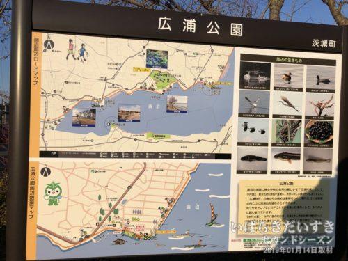 案内板:広浦公園