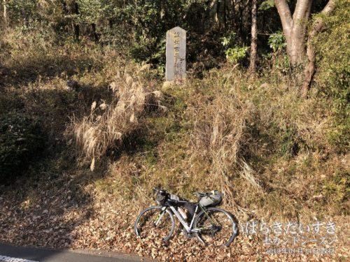茨城百景 046 涸沼 / 親沢公園キャンプ場入口側