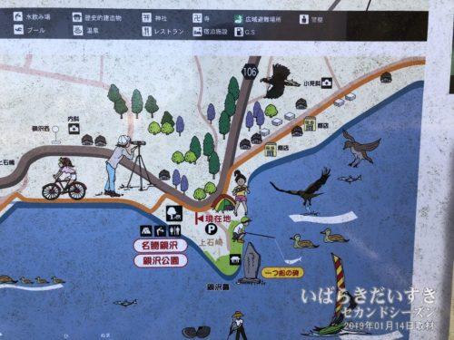 親沢公園はキャンプ場としても知られます。