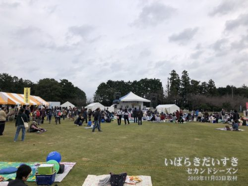 かすみがうら祭会場:第一常陸野公園