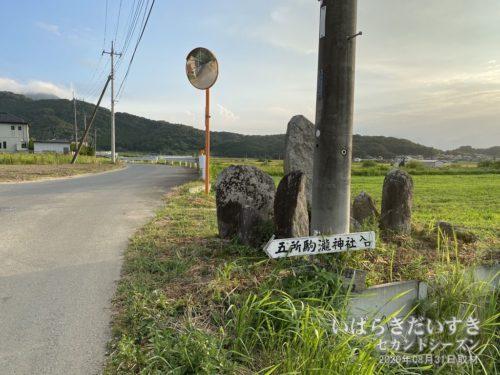 「五所駒瀧神社入口」の看板。こちらが正面らしい。