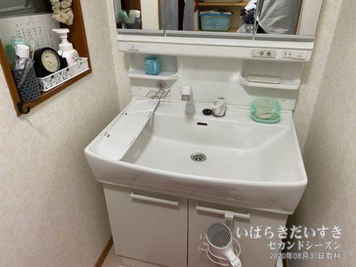 脱衣所 洗面台:伊勢屋旅館