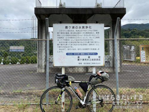 つくし湖 / 霞ヶ浦の水質浄化