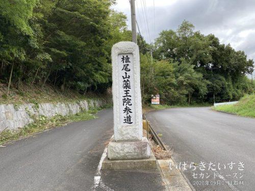 椎尾山 薬王院参道。筑波山の北側。