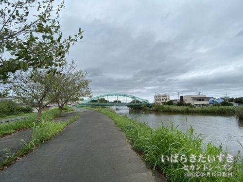 「小野川桜づつみ」から、大正橋、珍満飯店を望む。