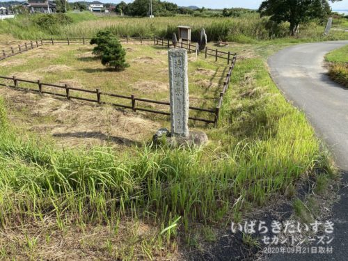 茨城百景 No.67 高須崎の一本松