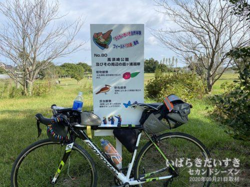 子どもいきいき自然体験フィールド100選<br>No.80 高須崎公園及びその周辺の霞ヶ浦湖岸
