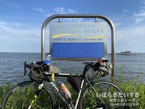 茨城新聞創刊100周年記念キャンペーン<br>みんなで守ろう育てよう 水のふるさと豊かな未来