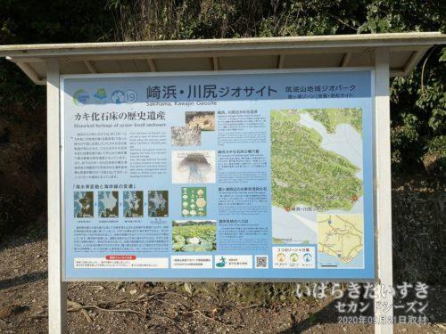 崎浜・川尻ジオサイト / 筑波山地域ジオパーク