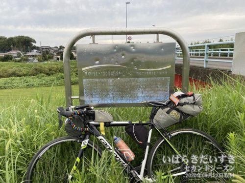 茨城新聞創刊100周年記念キャンペーン<br>住む人の 善意がうつる清い川