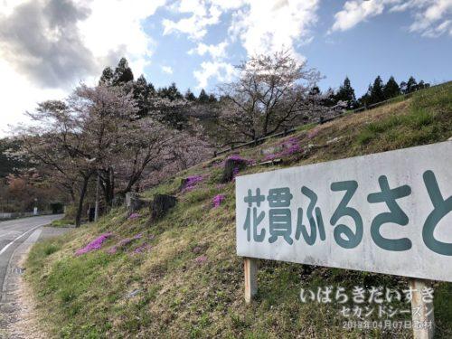 花貫ふるさと自然公園