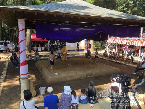 化蘇沼稲荷神社 / 夏祭り 奉納相撲