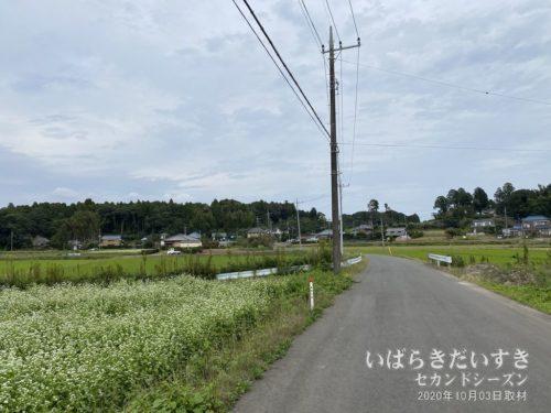生活道路:見通しが悪い場合や、信号機のない交差点など、気をつかいます。