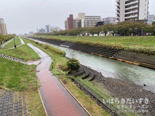 桜川(水戸市)。今日の桜川は水がきれいだ。