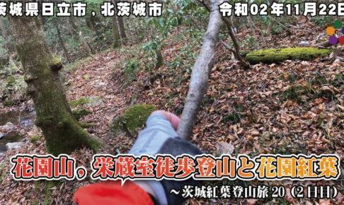 茨城紅葉登山旅20 2日目 ~花園山,栄蔵室徒歩登山と花園紅葉 201122