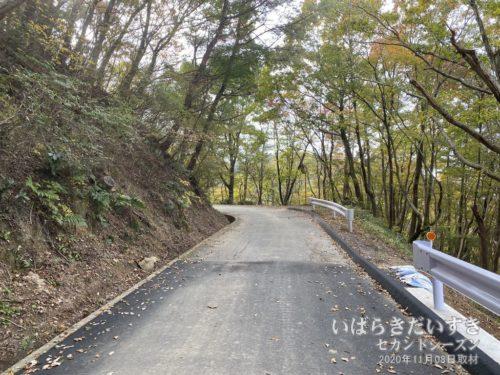 山の中のコース探索を諦め、アスファルト道を進むことにします。