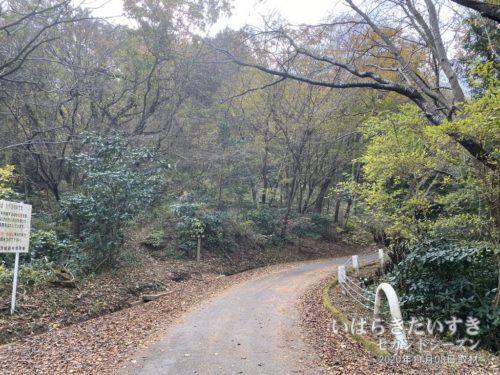 「<足尾山」のプレートを発見!踏み跡もある!