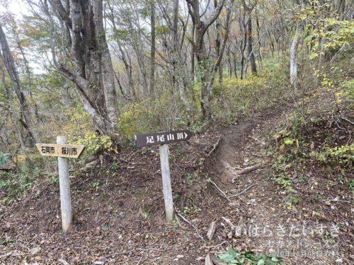 「足尾山頂」のプレートどおりに進む。