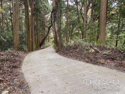 足尾神社拝殿からは整備された道路で下っていきます。