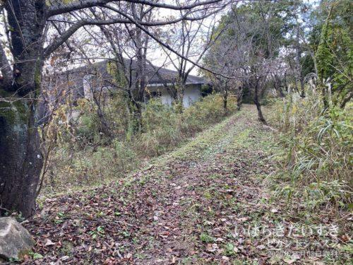 「みかげ憩いの森」は、整備されない完全放置プレイだった。
