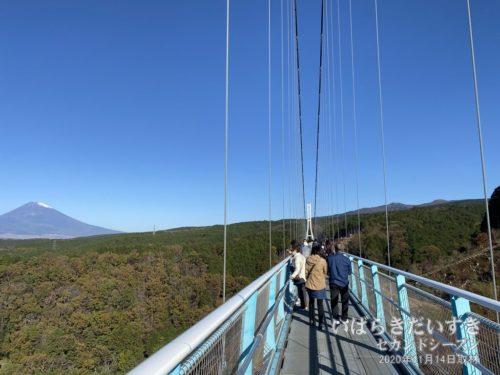 思いのほか、吊橋の幅は狭い。