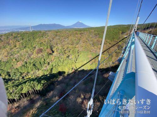 吊橋から眺める、日本一の富士山の説得力。