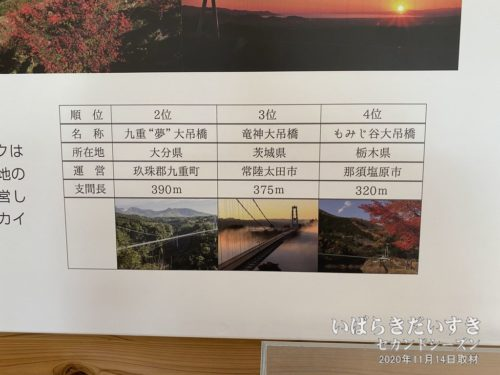 『三島スカイウォーク』が、人道用吊橋として日本一であることを、明確に記しています。