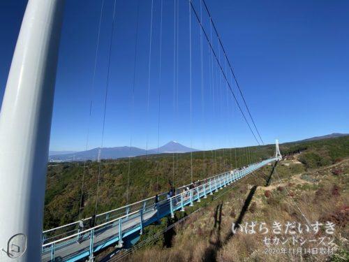 三島スカイウォーク (三島大吊橋)