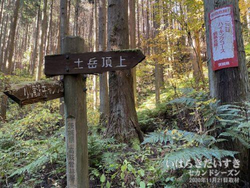 「土岳頂上」の標識。