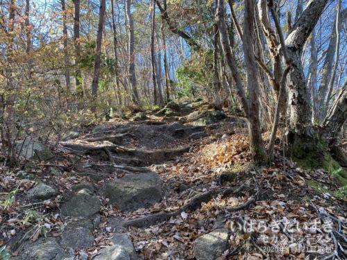 土岳は全般的に、岩肌が目立ちます。