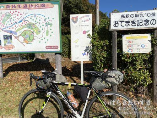 子どもいきいき自然体験フィールド100選<br>No.08 高萩市森林公園