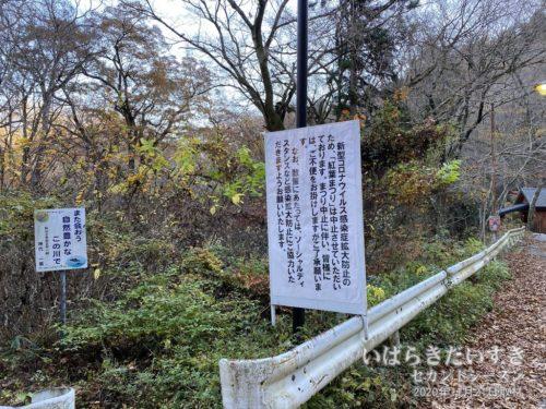 建前上(?)、コロナウイルスの影響で「紅葉まつり」は中止となりました。