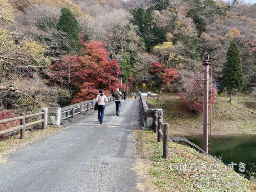 水沼ダムの紅葉。