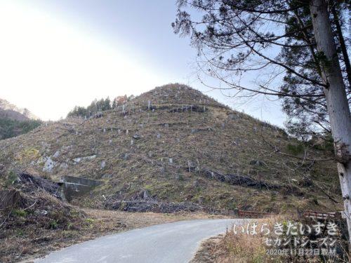 奥の院、七ツ滝方面に向かう山は伐採されている。