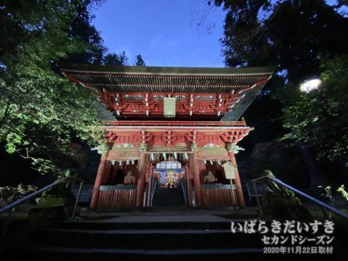 花園神社 随身門 ライトアップ。