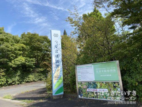 つくば植物園 / 筑波実験植物園