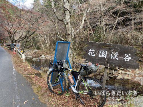 自転車で花園山クライム。花園渓谷を通過。