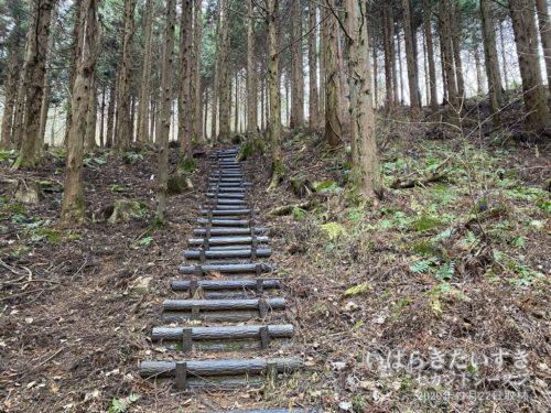 栄蔵室山頂への最後の上り。