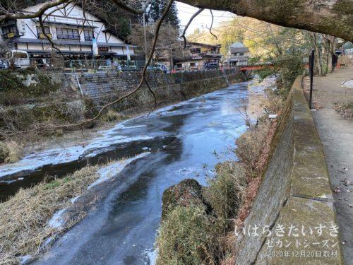 滝川も凍っている。シガはない。