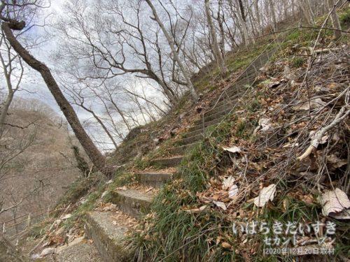 階段は急で、踏み面も狭い。