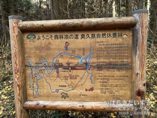 いばらき森林浴の道 No.26