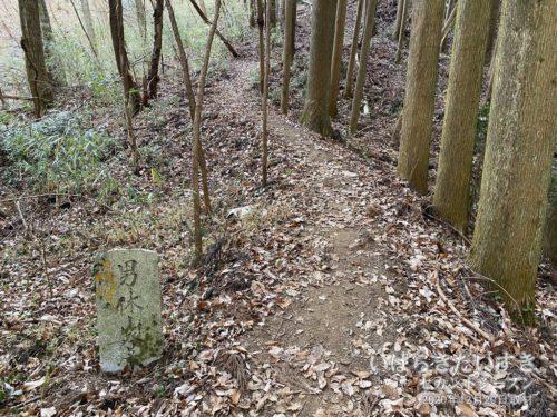 「男体山登山口」の石。ここから男体山なのか。